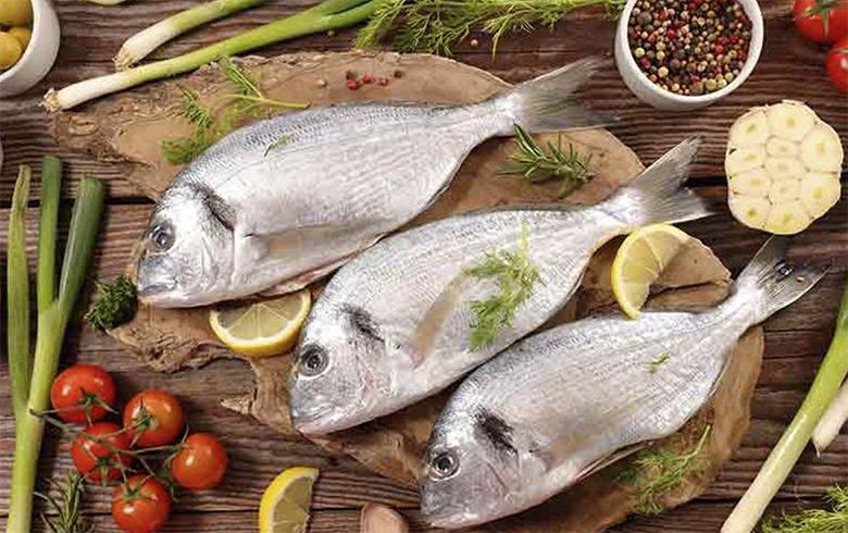 Manfaat Ikan Bagi Kesehatan Tubuh